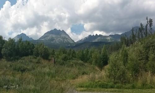 Zdjecie SłOWACJA / Stary Smokowiec. / Droga Szczyrbski Staw - Stary Smokowiec. / Tu rządzi Gerlach (centralnie).Panorama.