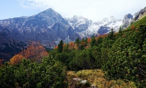 SłOWACJA / Tatry Wysokie / Dolina Białych Stawów / W jesiennych barwach