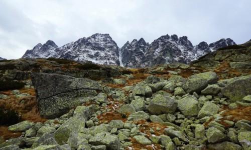 SłOWACJA / Tatry Wysokie / Dolina Mięguszowiecka / W drodze nad Wielki Hińczowy Staw