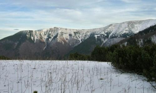 Zdjęcie SłOWACJA / Mała Fatra / Sedlo za Kravianskym / Widok na Południowy Groń