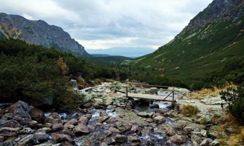 SłOWACJA / Wysokie Tatry / Powrót z nad Hińczowych Stawów / Mostek nad Żabim Potokiem