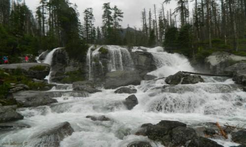 Zdjęcie SłOWACJA / Wysokie Tatry. / Dolina Zimnej Wody. / Wodospad Zimnej Wody.