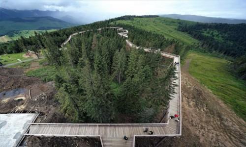 Zdjęcie SłOWACJA / Spisz / Bachledka / Ścieżka w koronach drzew