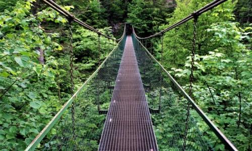 Zdjęcie SłOWACJA / Spisz / Słowacki Raj - Przełom Hornadu / Wiszący mostek