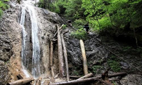 SłOWACJA / Spisz / Słowacki Raj - Dolina Klasztorisko / Obok wodospadu