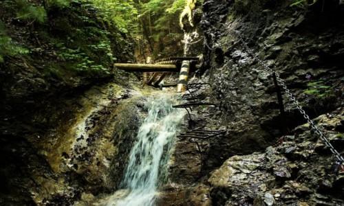 Zdjęcie SłOWACJA / Spisz / Słowacki Raj  / W pięknej scenerii