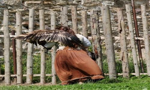 Zdjęcie SłOWACJA / - / Zamek w Starej Lubovni / Tańcząca z orłami