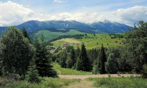 Zdjęcie SłOWACJA / Poprad / Bachledowa Dolina / Tatry Bielskie