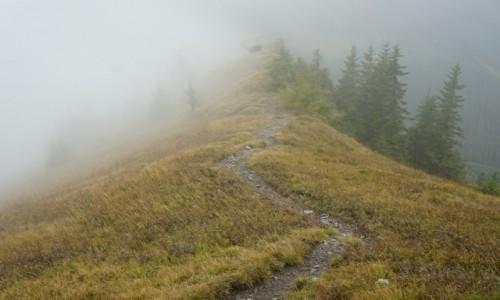 Zdjęcie SłOWACJA / Niżne Tatry / Demianowska Dolina  / Mgła na Sinej