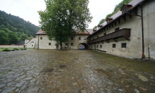 Zdjęcie SłOWACJA / Pieniny / Czerwony Klasztor / W deszczu