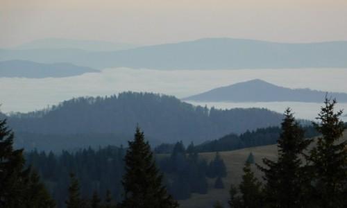 Zdjecie SłOWACJA / wielka Fatra / wielka Fatra / morze chmur