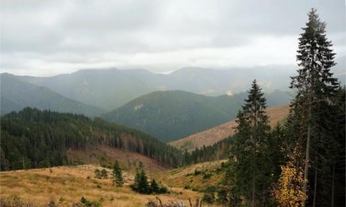 SłOWACJA / Dumbierskie Tatry / W drodze na Siną / Sino, czyli jakie miejsce taki krajobraz
