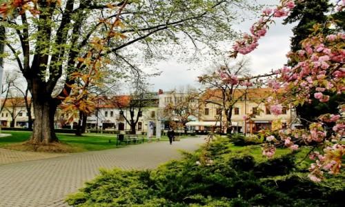 Zdjecie SłOWACJA / Kraj koszycki / Nowa Wieś Spiska / Wiosennie
