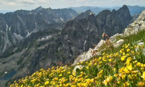 Zdjecie SłOWACJA / Tatry / gdzieś na szlaku / cudowne góry