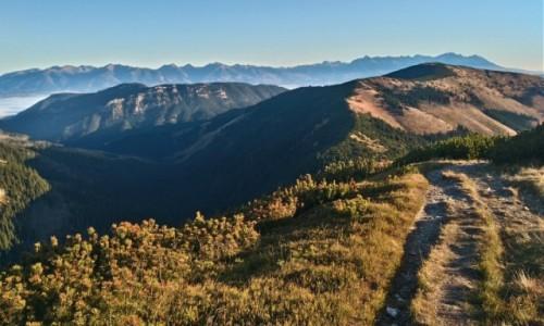 Zdjecie SłOWACJA / Tatry Niskie / gdzieś na szlaku / jesień w Tatrach Niskich