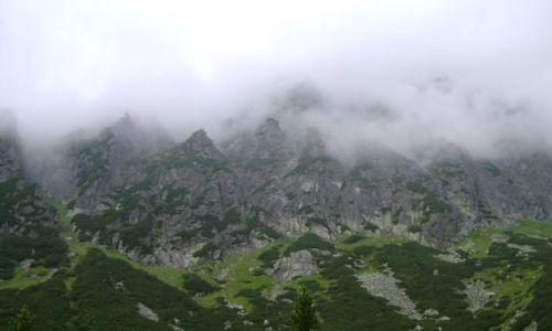 Zdjecie SłOWACJA / tatry / dolina małej zimnej wody / dolina małej zimnej wody