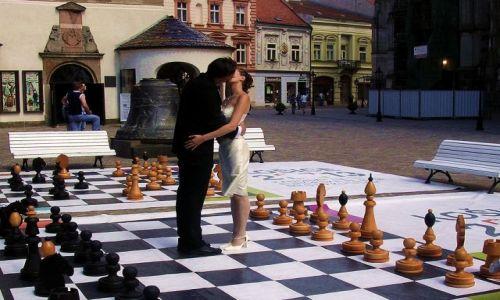 Zdjecie SłOWACJA / brak / Koszyce / Małżeństwo to partia szachów