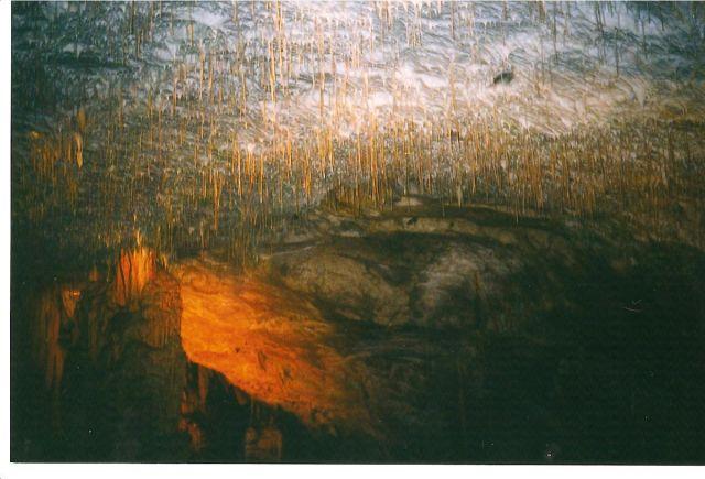 Zdj�cia: Postojna, S�owenia, Jaskinia Postojna, S�OWENIA