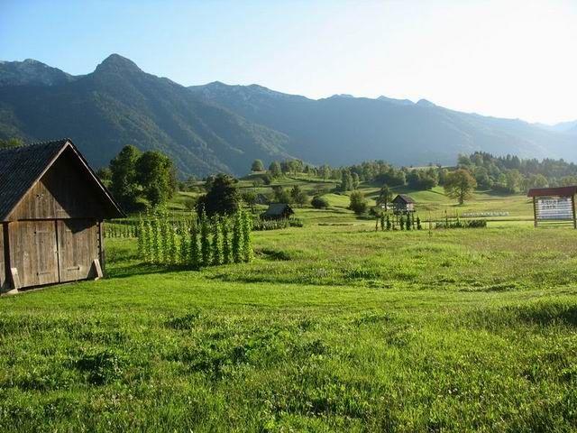 Zdjęcia: po drodze :), Triglavski Narodni Park, Alpy Julijskie, SłOWENIA
