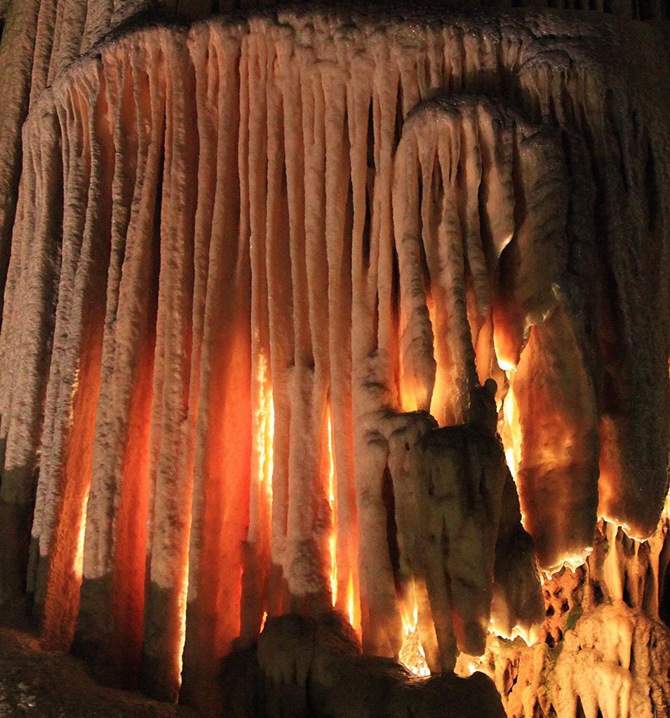Zdjęcia: Jaskinia Postojna, Wewnętrzna Kraina, Skalny lampion, SłOWENIA