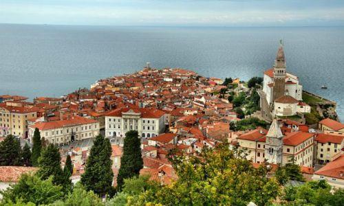 Zdjecie SłOWENIA / - / PIRAN / widok miasteczka z góry