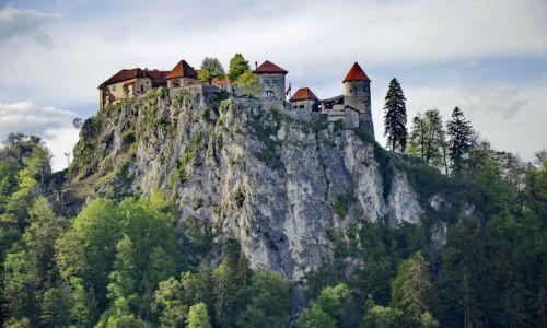 Zdjecie SłOWENIA / Bled / Bled / Zamek nad jeziorkiem Bled