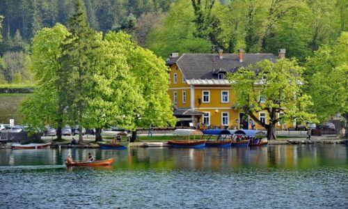 SłOWENIA / Bled / Bled / Idyliczna przystań w Bled