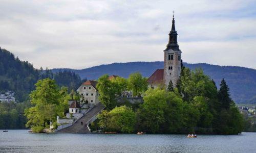 Zdjecie SłOWENIA / Carniola / Bled / Wyspa na jeziorze Bled