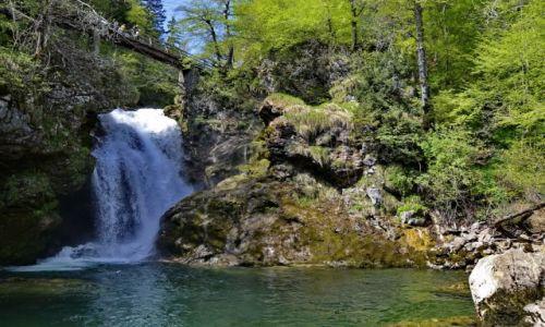 Zdjęcie SłOWENIA / Carniola / Vintgar / Uroczy wodospad
