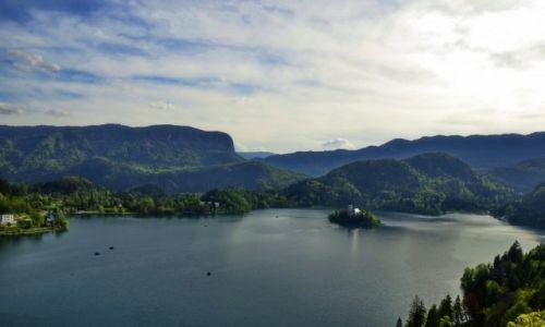 Zdjecie SłOWENIA / Bled / Bled / Jezioro Bled