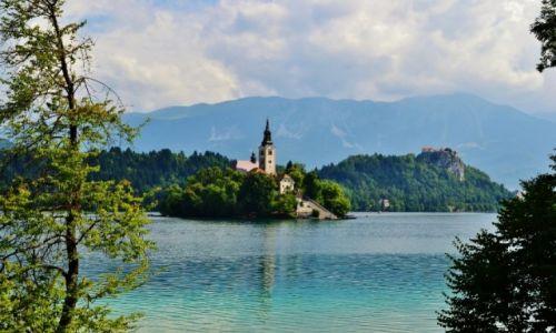 Zdjecie SłOWENIA / - / Słowenia, Bled / Słowenia, Bled