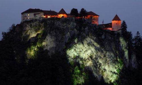 Zdjecie SłOWENIA / Górna Kraina / Bled / Bled