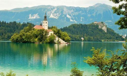 Zdjecie SłOWENIA / -Bled / Bled / Slowenia