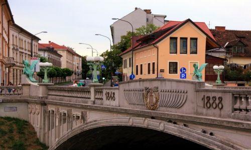 Zdjęcie SłOWENIA / Lubiana / Stare Miasto / Most Smoka