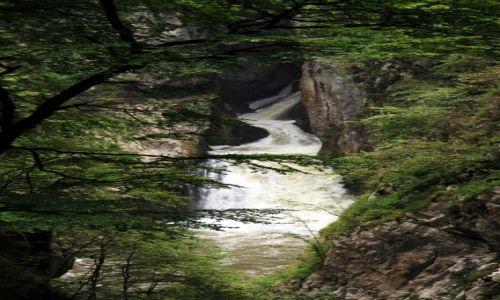 Zdjęcie SłOWENIA / Divaca / Betanja, wejście do Jaskiń Szkocjańskich / Wodospad Kozjak, przed wpłynięciem do jaskini