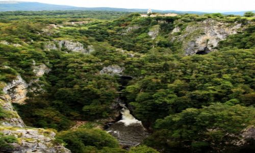 Zdjęcie SłOWENIA / Divaca / Betanja / Park krajobrazowy oraz obszar ochrony biosfery Jaskiń Szkocjańskich
