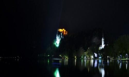 Zdjęcie SłOWENIA / Górna Kraina / Bled / Bled, mała panorama.