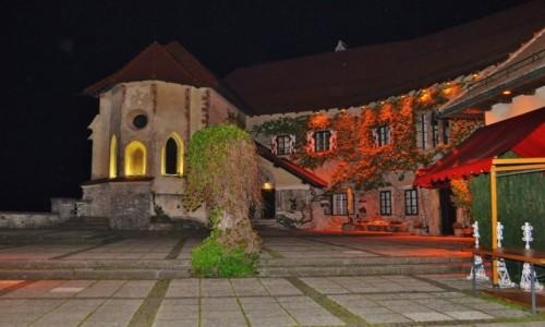 Zdjecie SłOWENIA / Górna Kraina / Bled / Bled, zamek