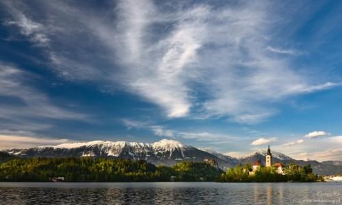 Zdjęcie SłOWENIA / Bled / Bled / Bled