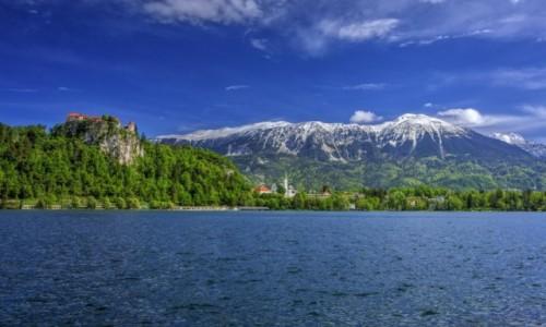 Zdjęcie SłOWENIA / Górna Kraina / Bled / Alpy Julijskie, Jezioro Bled