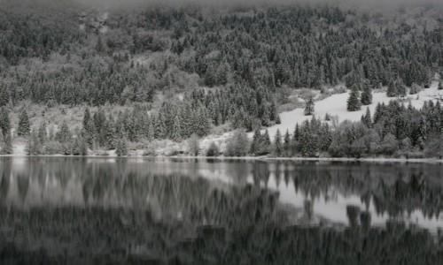Zdjęcie SłOWENIA / Park narodowy / Bohinj / Lustro