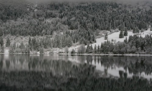 SłOWENIA / Park narodowy / Bohinj / Lustro