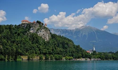 Zdjęcie SłOWENIA / Alpy Julijskie / Bled / na skale...