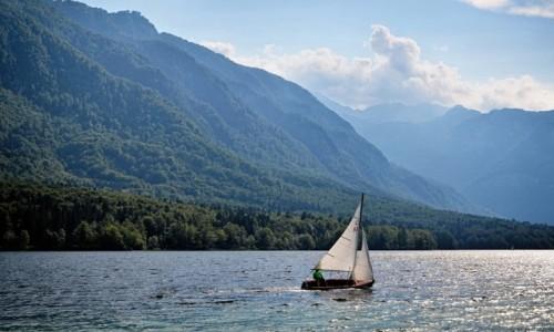 Zdjęcie SłOWENIA / Alpy Julijskie / Jezioro Bohinj / z wiatrem...