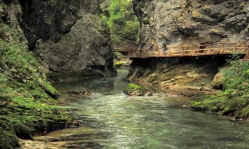 Zdjęcie SłOWENIA / Alpy Julijskie / Triglavski Park Narodowy-wąwóz Vintgar / w przesmyku...
