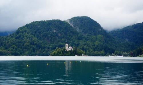Zdjecie SłOWENIA / Alpy Julijskie / Bled / we mgle...