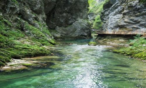 Zdjecie SłOWENIA / Alpy Julijskie / Triglavski Park Narodowy, Wąwóz Vintgar / zielony kanion...