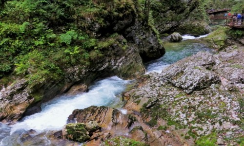 Zdjecie SłOWENIA / Alpy Julijskie / Triglavski Park Narodowy, Wąwóz Vintgar / barwne skałki...