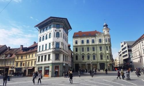 Zdjecie SłOWENIA / Ljubljana / Ljubljana / Dom Hauptmanna