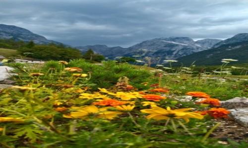 Zdjecie SłOWENIA / triglawski park narodowy  / okolic Bovec / kolorowe alpy